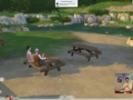 Sims_4_Gamplay_Trailer_Park_126