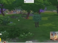 Sims_4_Gamplay_Trailer_Park_152