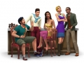 Sims 4 Bar