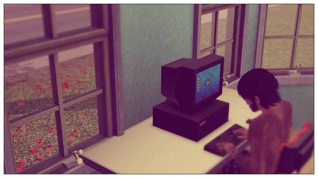 14-Panam am Computer