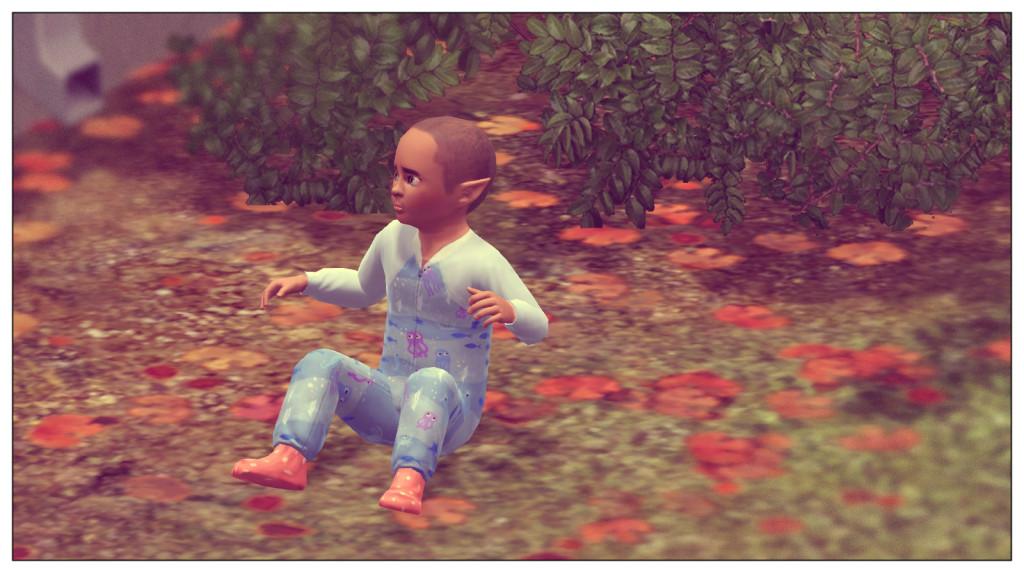 9 - Alfred alleine im Garten