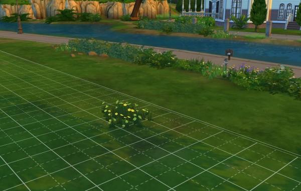 Sims 4 Outdoor Leben Gelbe Wildblumen