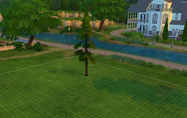 Sims 4 Outdoor Leben Kleine Granite Falls Kiefer