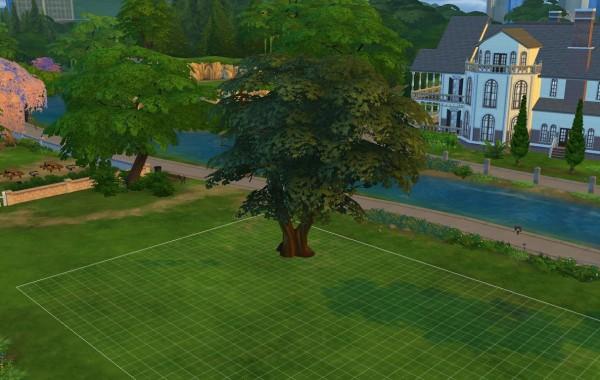Sims 4 Outdoor Leben Mächtiger Weißdornbaum