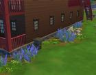 Sims 4 Outdoor Leben Seite