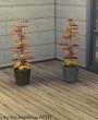 Sims 4 Download Schlazimmer Shabby Chic Pflanzen